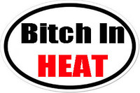 Bitch In Heat Oval Bumper Sticker