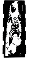 Han Solo Carbonite Decal