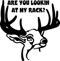 Are You Looking At My Rack? Hunting Decal 1