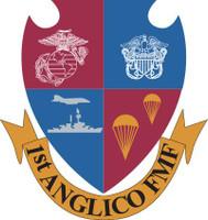 USMC 1st ANGLICO FMF