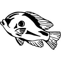 Bluegill Fish Decal