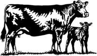 Cattle Decal