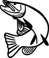 Fishing Decal #15