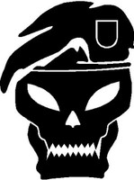 Call Of Duty Skull Decal