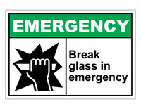 ANSI Emergency Break Glass In Emergency