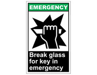 ANSI Emergency Break Glass For Key In Emergency 1