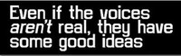 """Even If The Voices Aren't Real..."" Bumper Sticker"