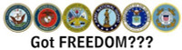Got Freedom Sticker