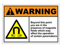 ANSI Warning Beyond This Point You Are In The Presence Of Magnetic Fields