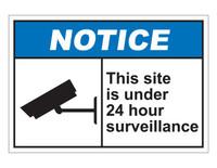 ANSI Notice This Site Is Under 24 Hour Surveillance