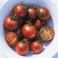 Brown Berry Tomato Seeds