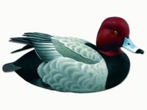 Loon Lake Swan Lake Redhead Waterfowl