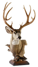 Out West Mule Deer by Stephen Herrero