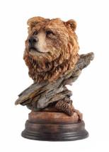 Bruin Brown Bear by Stephen Herrero