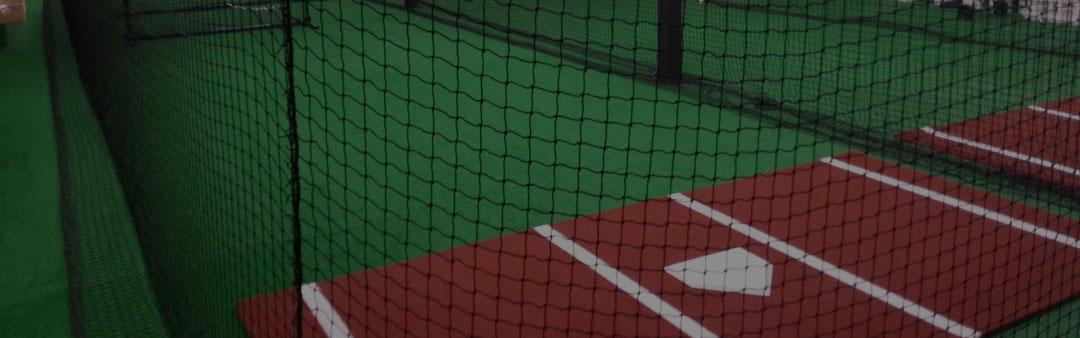 Delano Bats Elite Series