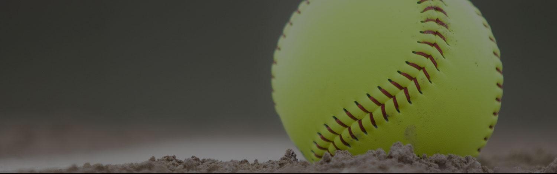 Delano Bats Softball Series