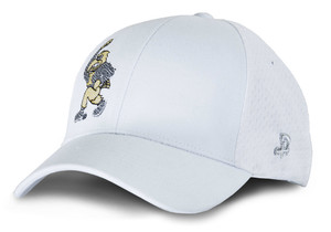 Iowa Hawkeyes Stretch Fit Herky Hat - Brady
