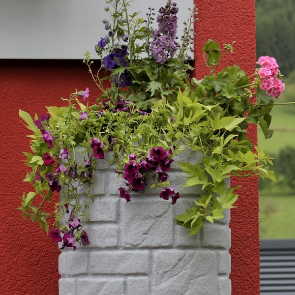 Arcado water butt showing planter in lid growing flowers.