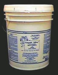 CLEANER LIQUID ALIVE ENZYM 4-STRAIN BACTERIA 5 GALLON PAIL