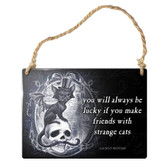 Strange Cats Skull Hanging Metal Sign Home Decor