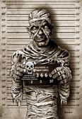 Mummy Mugshot by Marcus Jones Screaming Demons Canvas Giclee Art Print