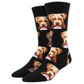 Socksmith Men's Crew Socks Pit Bull Puppy Dogs Black