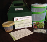 Butterfly Adoption Kits - Caterpillar Rearing Kits