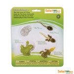 Life Cycle of a Frog Replica Set 269129