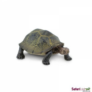 Desert Tortoise Replica By Safari Ltd Lifelike Tortoise