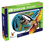 Hercules Beetle 4D Vision Anatomy Model Kit 26108