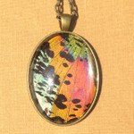 The shimmering array of colors in this real butterfly wing pendant is magnificent. I have handcrafted this necklace from a REAL Madagascar Sunset Moth! The wings are embedded under al arge 30x40mm magnified glass cabochon - set in antique brass. The Chain measures approximately 19 inches and is meant to rest on the chest.