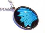Blue Swallowtail Wing Oval Pendant -Silver