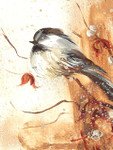 Black-capped Chickadee Oil Painting II: Ornament / Mini Wall Hanging