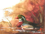 Wood Duck Oil Painting: Ornament / Mini Wall Hanging