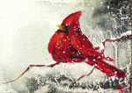 Cardinal Oil Painting: Ornament / Mini Wall Hanging