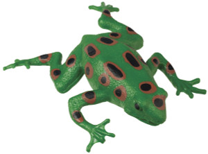 Frog Squishimals Toy - Stretchy, Squishy Frog
