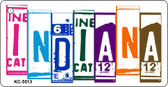 Indiana License Plate Art Metal Novelty Key Chain