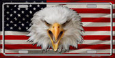 USA Eagle Metal Novelty License Plate