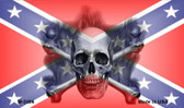 Confederate Skull Novelty Metal Magnet