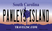 Pawleys Island South Carolina State License Plate Magnet M-5338