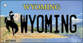 Wyoming State License Plate Key Chain KC-10512