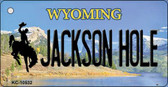 Jackson Hole Wyoming State License Plate Key Chain KC-10532
