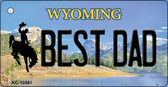 Best Dad Wyoming State License Plate Key Chain KC-10561