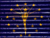 Indiana Flag Novelty Parking Sign P-2328