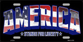 America Metal Novelty License Plate LP-3734