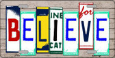 Believe License Plate Art Wood Pattern Metal Novelty License Plate