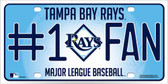 Rays Fan Metal Novelty License Plate