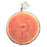 TREE Vibe STUMP Seat Cushion and LapDesk