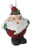 """2.75"""" Jingle Pal Santa Claus with Holly Berry Hat Christmas Ornament - 31082524"""