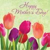 """Club Pack of 192 Spring in Bloom """"Happy Mother's Day"""" Disposable Lunch Napkins 6.5"""" - 32040514"""